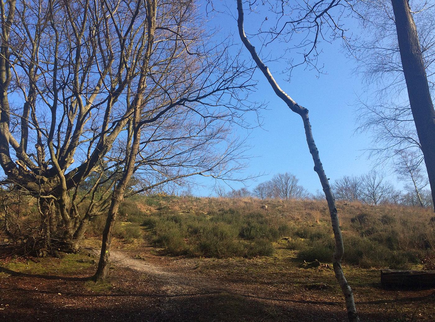 Croydon Addington Hills