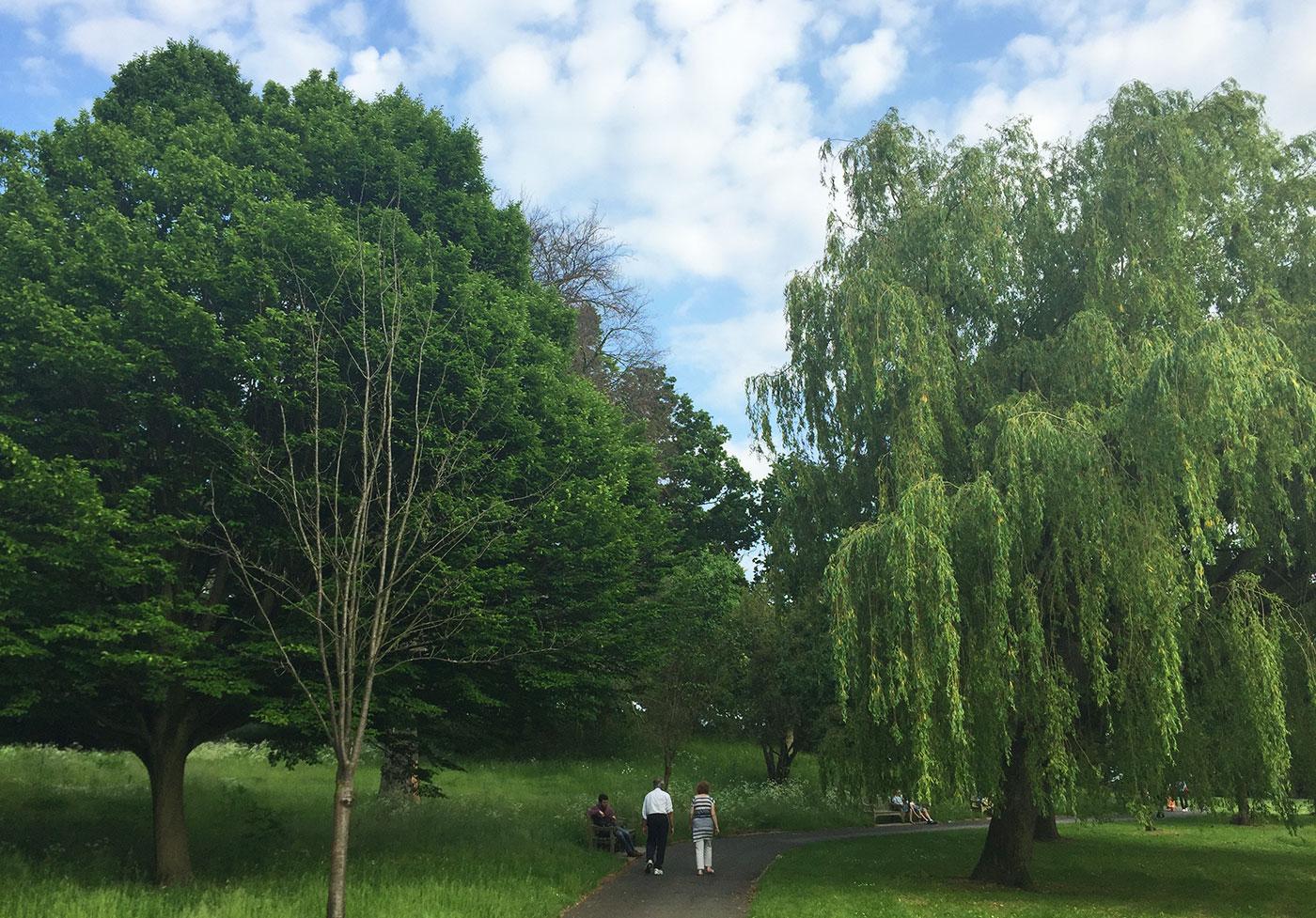Park Hill, Croydon