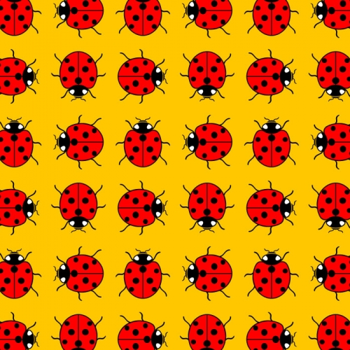The Ladybird busy bee