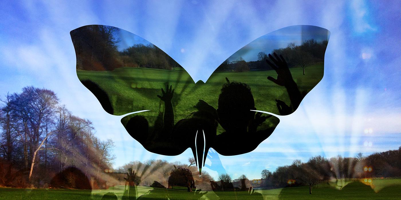 Butterfly Effect Festival