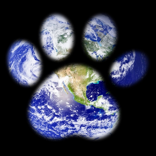 The planet's pawprint
