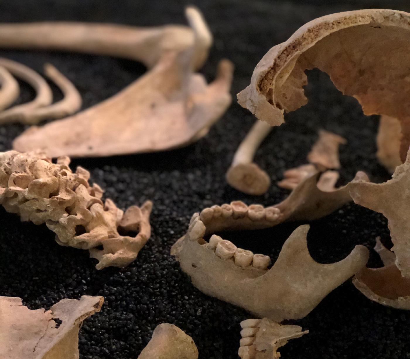 anglo-saxon croydon