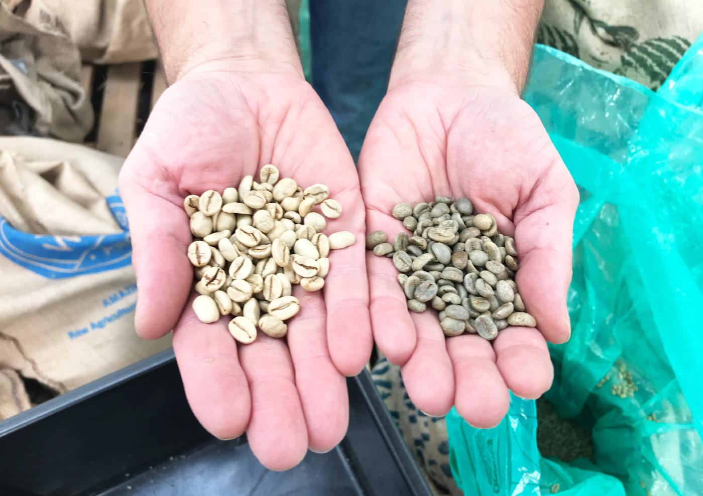 80 Stone Coffee Roasters